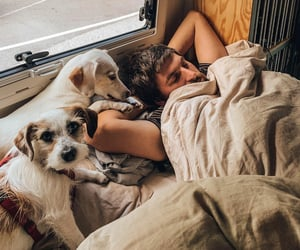adventure, bed, and Caravan image
