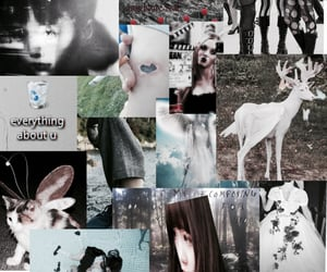 aesthetic, archive, and Collage image