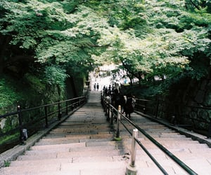 tree, nature, and stairs image