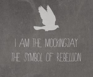 the hunger games and mockingjay image