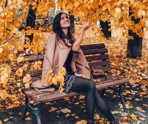 autumn, garden, and gorgeous image