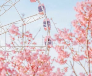 aesthetic, background, and blossom image