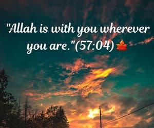 muslim, muslims, and verses image
