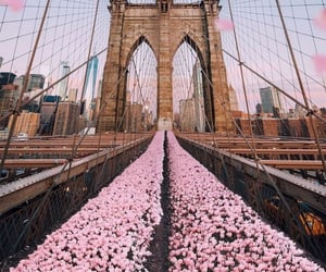 aesthetic, bridge, and cityscape image