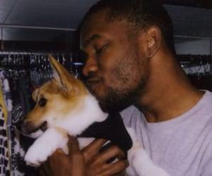boy, dog, and puppy image