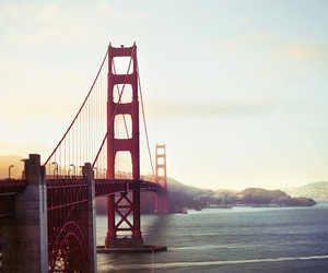 blue, golden gate, and photography image