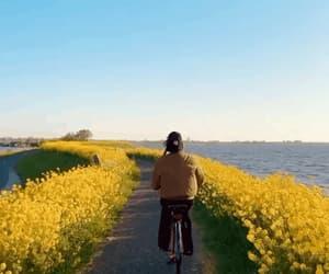 bicycle, boy, and paisagem image