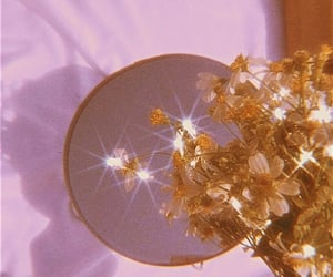 aesthetic, flowers, and mirror image