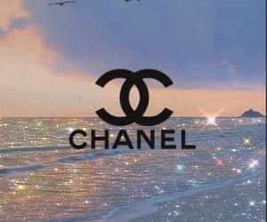 aesthetic, birds, and chanel image