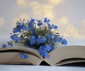 book, flowers, and forget me not image