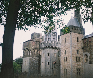 castle, love, and photography image