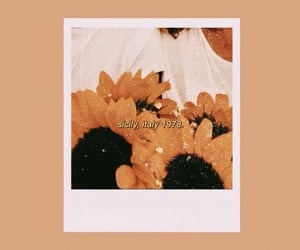 wallpaper, sunflower, and aesthetic image