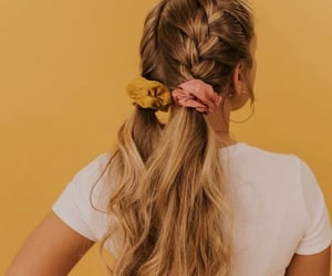 hairstyle, hair, and braids image