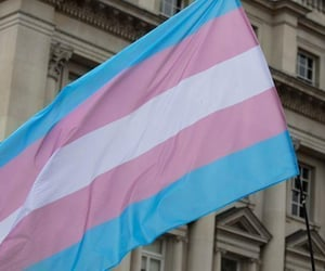 article, lgbtq rights, and trans rights image