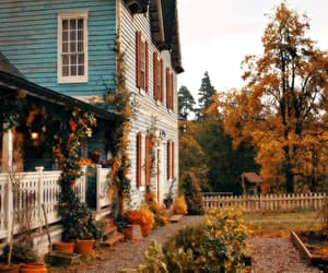 aesthetic, autumn, and a discovery of witches image