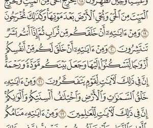 allah, muslim, and müslimah image