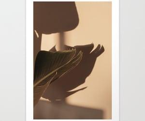 art print, photography, and tropical image