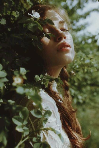 article, dreamer, and nature image