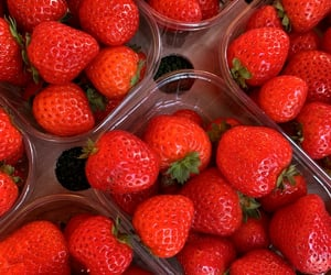 fruit, strawberry, and summer image