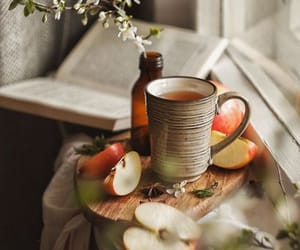 apple, autumn, and book image