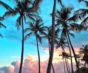 beautiful, beach, and nature image
