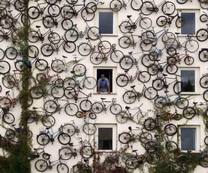 bike, bicycle, and art image
