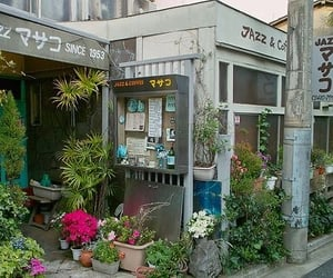 plants, japan, and flowers image
