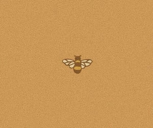 aesthetic, bee, and vintage image