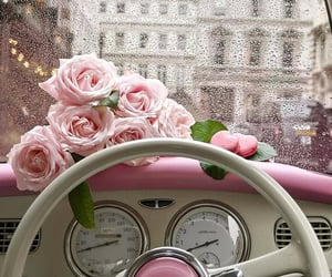 rose, pink, and car image