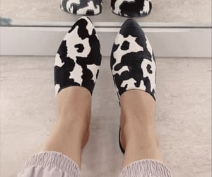 cow, fashion, and shoes image