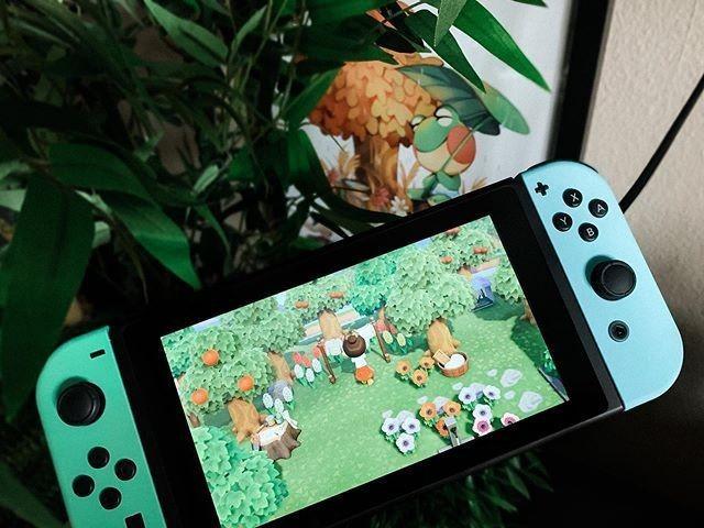 animal crossing, nintendo, and nintendo switch image