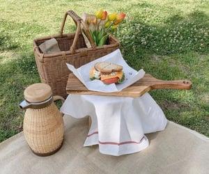 nature, picnic, and theme pics image