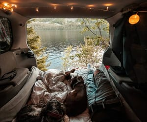 boyfriend, camping, and dog image