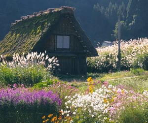 cottage, flower field, and cottagecore image