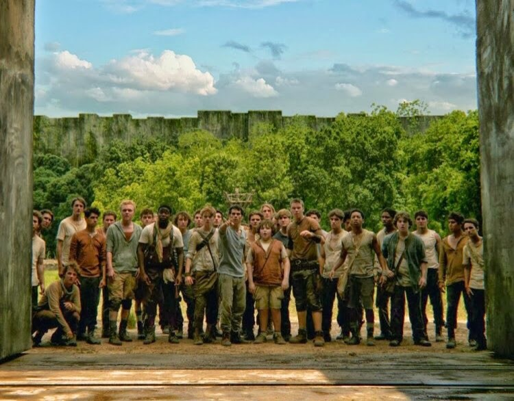 article, book, and the maze runner image