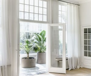 home design, plants, and white interior image