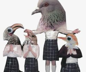 greta gerwig, lady bird, and poster image