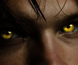 eyes, werewolf, and gold image