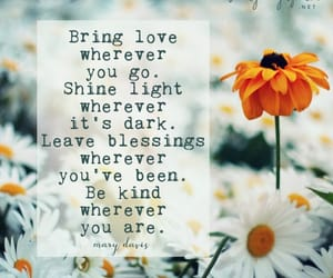 flowers, shine, and quote image