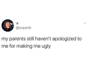 apologize, funny, and lol image
