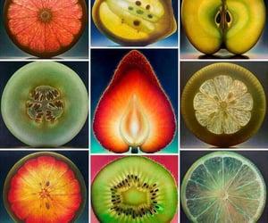 fruit, lemon, and orange image