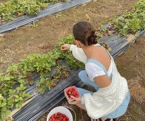 fashion, girl, and strawberry image