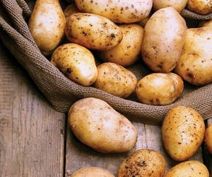 potato and vegetables image