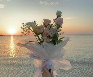 flowers, beautiful, and ocean image