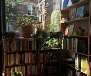 books, plants, and aesthetic image