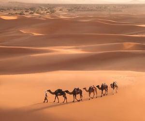 africa, beautiful, and desert image
