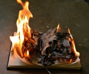 book, burnt, and fire image