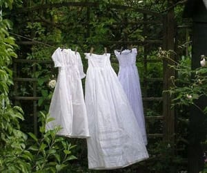 dress, white, and garden image