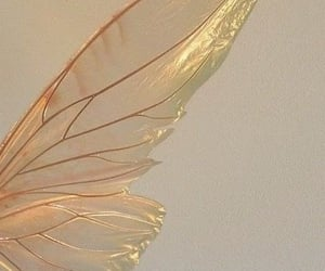 fairy, wings, and pink image