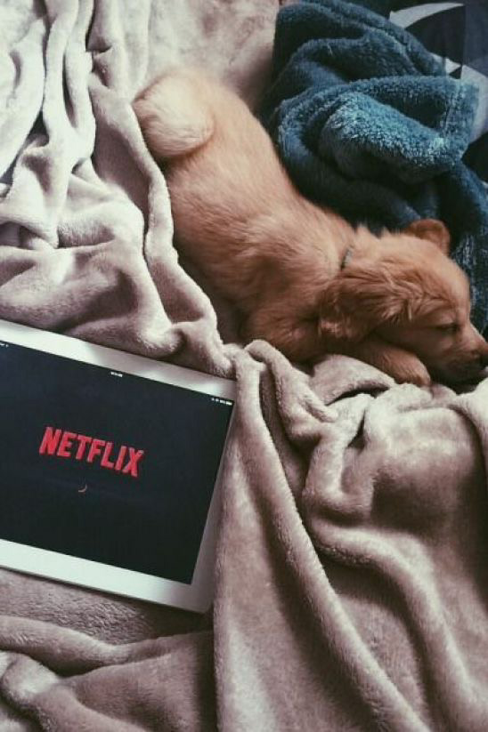 article, series, and netflix and chill image